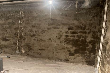 Les traitements anti salpêtre à Bordeaux permettent de lutter contre l'humidité de votre maison.