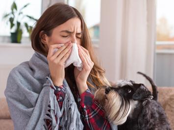 Le rhume est une conséquence de l'humidité dans la maison