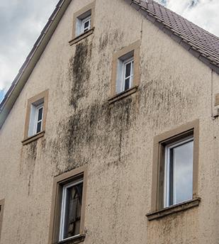 Taches d'humidité sur la façade d'une maison